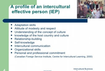 Intercultural business communication profiles