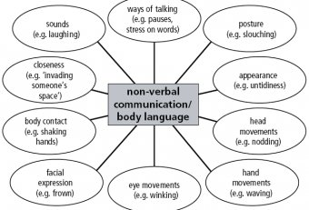 Nonverbal and verbal communication